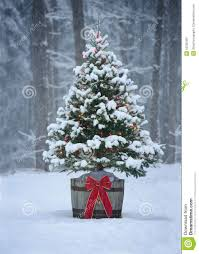 snowy christmas tree with colorful lights in a forest stock photo