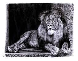 lion sketch 4 by sabbathsoul on deviantart