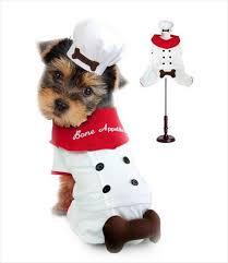 chef costume bone appetite chef costume g w