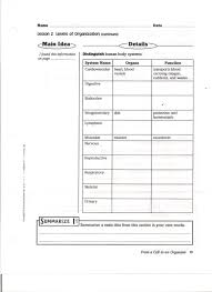 Bill Nye Digestion Worksheet 7th Grade Science Mrs Winters7th And 8th Science