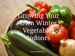 your own winter vegetables indoors