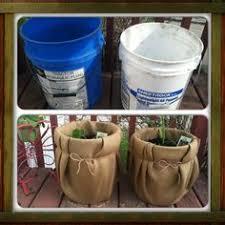 101 gardening growing tomatoes in buckets vegetable gardening