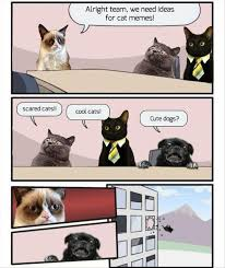 Make Your Own Cat Meme - alright team we need cat meme cat planet cat planet