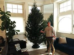 4 foot slim tree amodiosflowershop