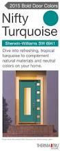 fiber glass door pulse solei fiberglass door painted nifty turquoise u2013 one of the