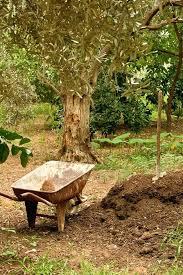 Garden Setup Ideas How To Set Up A Garden Gardening Gift Set Australia Alexstand Club
