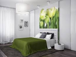 Master Bedroom Designs Green Bedroom Mesmerizing Master Bedroom Ideas With White Fabric