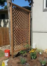 Backyard Privacy Screen by 50 Garden Trellis Backyard Privacy Shield Diy Diy Tips Tricks