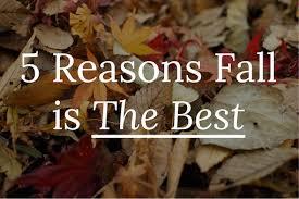 Why Fall Is The Best Season 5 Reasons Fall Is The Best Season U2014 Curator Pr Creative Earned