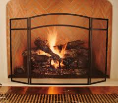 fireplace screens with doors image awesome fireplace screens