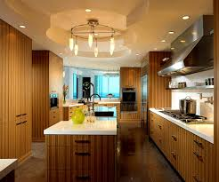 accessories amusing modern wood kitchen ideas all cabinets