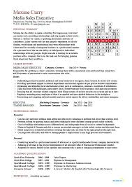 Car Sales Resume Sample by Media Sales Executive Cv Sample