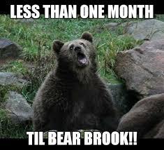 Running Bear Meme - bear brook trail marathon by just keep running llc photos