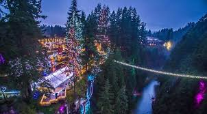 check out the world u0027s tallest christmas tree at canyon lights this