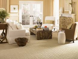 Carpets For Living Room by Marvellous Design Living Room Carpet Ideas Plain Awesome Furniture
