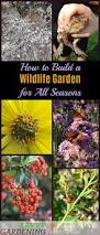 plants for native bees a wildlife garden project for all seasons the best plants for success