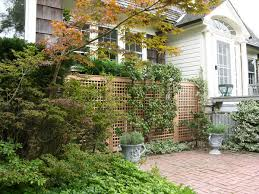 lattice fence design completes a perfect garden decoration in your
