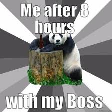 Bad Boss Meme - awesome your boss memes wallpaper site wallpaper site