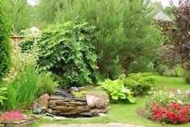 round rock tree care home