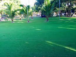 how to install artificial grass apache junction arizona backyard
