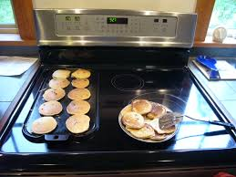 Which Induction Cooktop Is Best An Induction Cooktop For Our Kitchen Greenbuildingadvisor Com