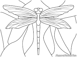 related dragonfly coloring pages item 3330 dragonfly coloring