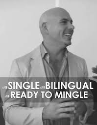 Pitbull Meme Dale - single and bilingual png