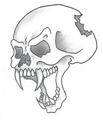 pictures of drawings of skulls free download clip art free