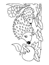 hedgehog coloring pages download print hedgehog coloring pages