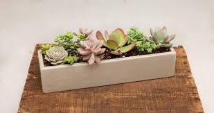 exceptional modern style planter designs