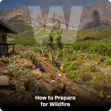 Wildfire Book Summary by How To Prepare For Wildfire Www Vulcantraining Co Za
