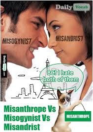 What Does Meme Mean In English - misogynist vs misandrist vs misanthrope meaning in hindi with