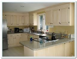 Cabinet Colors For Kitchen Painted Kitchen Cabinets Ideas Colors Astounding Design 17 Top 25