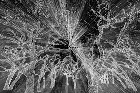 johnson city christmas lights enter state wide free photo contest and win an ipad for the most