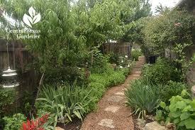 Backyard Botanical Complete Gardening System Texture Food Flower Designs Central Texas Gardener