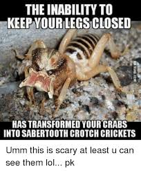 Crickets Meme - the inability to urkeepyourlegsclosed has transformed your crabs