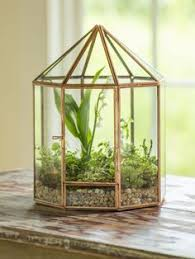 hanging prism terrarium shown with other terrariums sold
