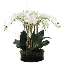 faux orchids shop faux orchids arrangements on wanelo