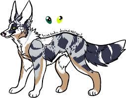 australian shepherd wolf web earth online u2022 view topic shadow wolves reborn wolf roleplay