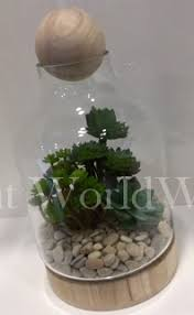 glass bottle terrarium with artificial cacti