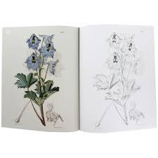 kew gardens flowering plants colouring book arcturus