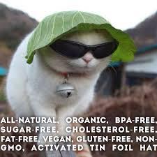 Tin Foil Hat Meme - organic tinfoil hat album on imgur