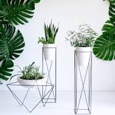 plant stand the case study cylinder with snake plant amazing