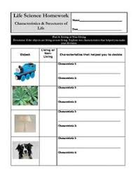 Characteristics Of Living Things Worksheet Middle Cube Of The Cube Helps Me Understand The