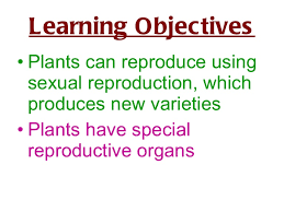 sexual reproduction in plants powerpoint