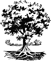 tree with roots clip art 47
