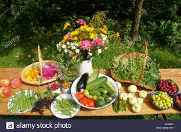 fruits flowers vegetables fruits flowers herbs stock photo 62789173 alamy