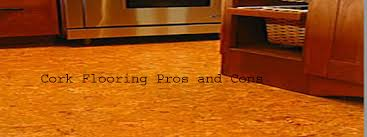 pros and cons of cork flooring meze