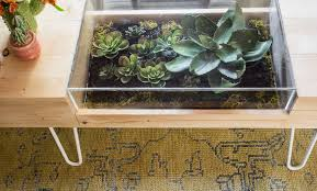 coffe table make a table out of pallets succulent vase succulent