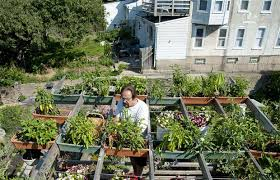 rooftop vegetable gardens write teens